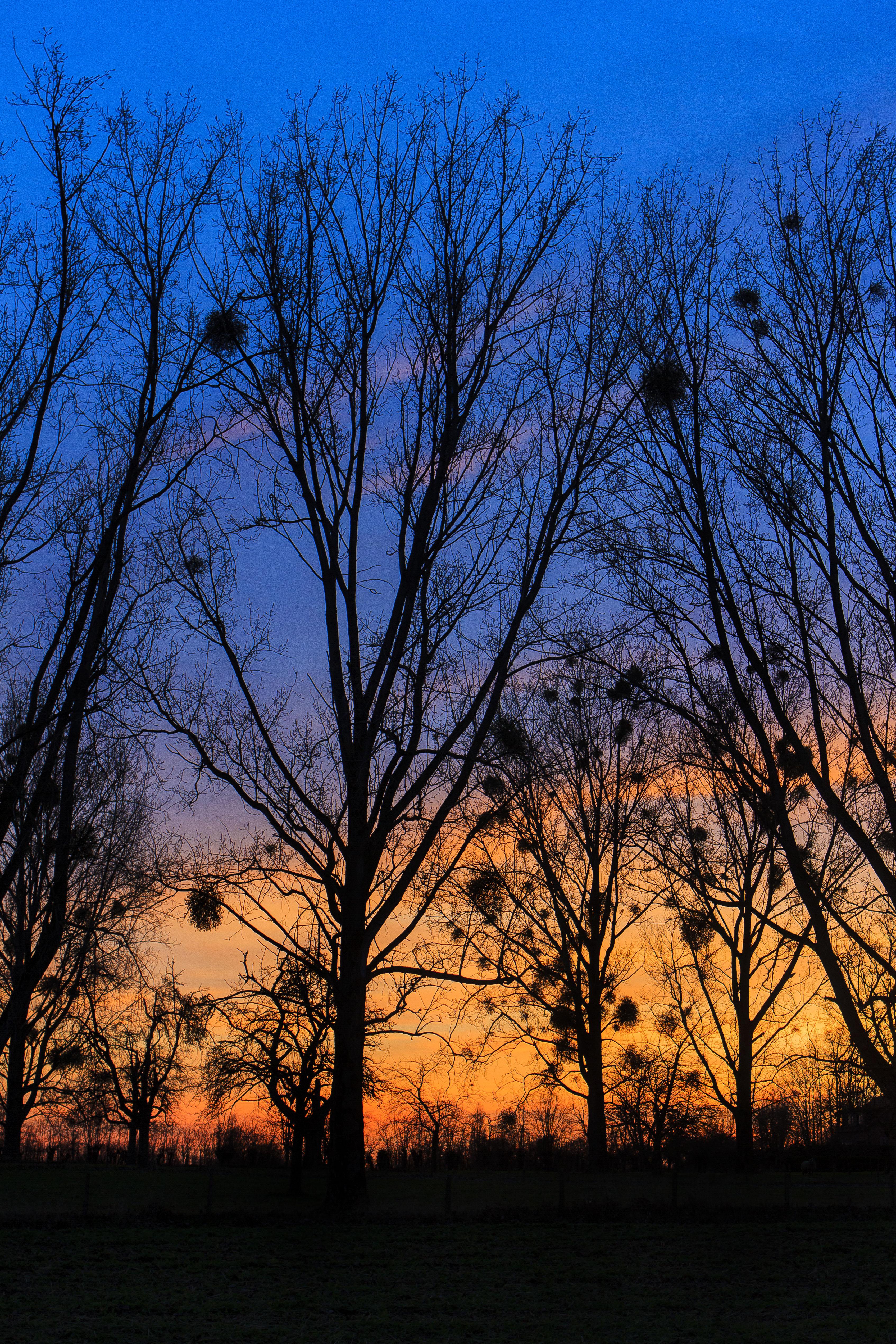 Zonsondergang bij Herderen (Belgïe)